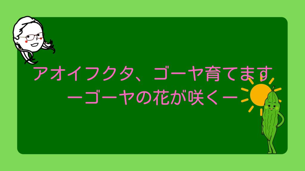 ゴーヤの花が咲く【アオイフクタのゴーヤ育成シリーズ】