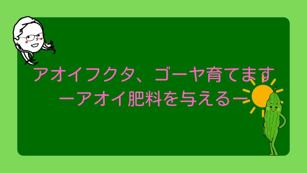 ゴーヤに肥料を与える【アオイフクタのゴーヤ育成シリーズ】